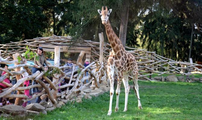 Od pondělí otevřou papírnictví, prodejny dětského zboží i zoologické zahrady