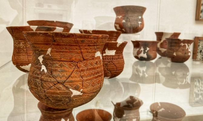 Muzeum vystavuje unikáty ze svých sbírek. Spojuje je téma flóry a fauny